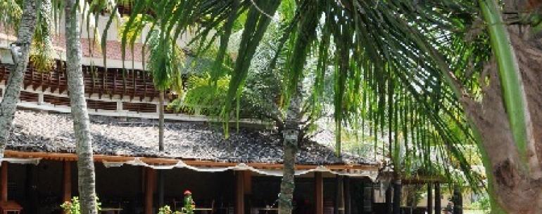 Керала - чарующая красота тропического побережья Индии