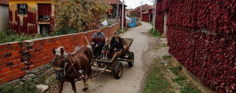 """Сербская """"столица паприки"""""""