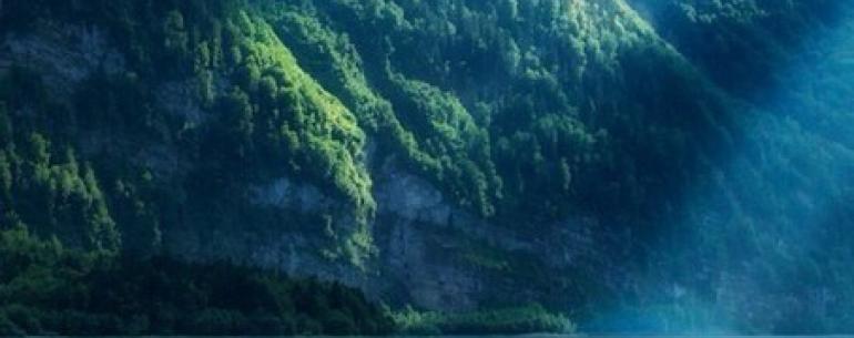 «Если Вы сидите где-нибудь в Гималаях и тишина окружает Вас – это тишина Гималаев, но не Ваша. Вы должны найти собственные Гималаи внутри себя»