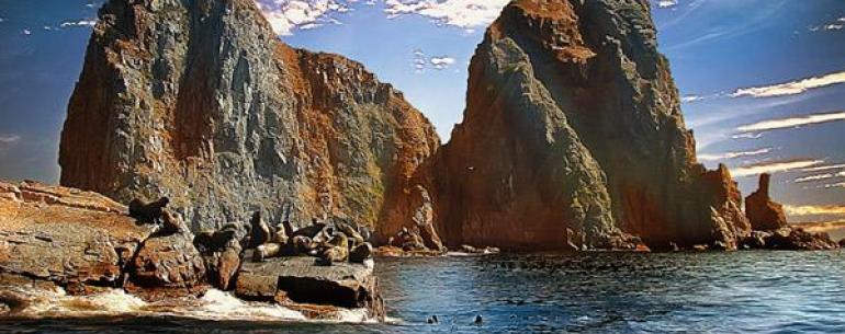 Авачинская бухта (Авачинская губа) — крупная незамерзающая бухта Тихого океана у юго-восточного побережья полуострова Камчатка. Является главными транспортными «воротами» Камчатского края. Основной порт — город Петропавловск-Камчатский, обслуживает рыболо