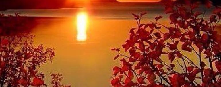 - Октябрь, - со страстью в голосе произнес он. - Боже, это мой любимый месяц, готов его поедать, вдыхать, втягивать запахи. Ах, этот мятежный и печальный месяц. Смотри, как от встречи с ним зарделась листва. В октябре мир объят пламенем...