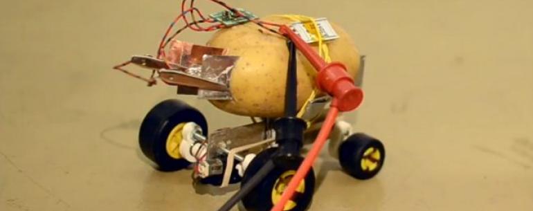 #видео | Житель Польши построил самоуправляемого робота из картофелины