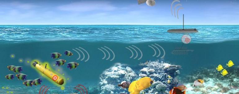 Американские военные исследуют использование морской жизни для выявления угроз