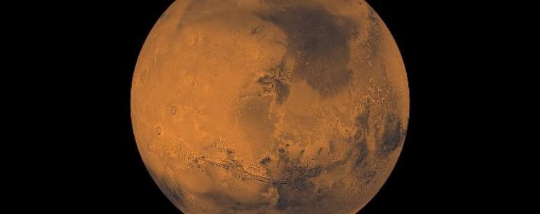 NASA может использовать рои роботизированных пчел для изучения Марса