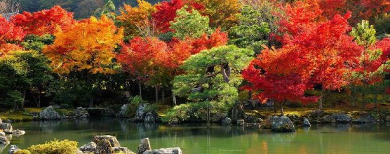 Арасияма (??) — это очень живописный район на западной окраине Киото, пользующийся популярностью среди туристов.